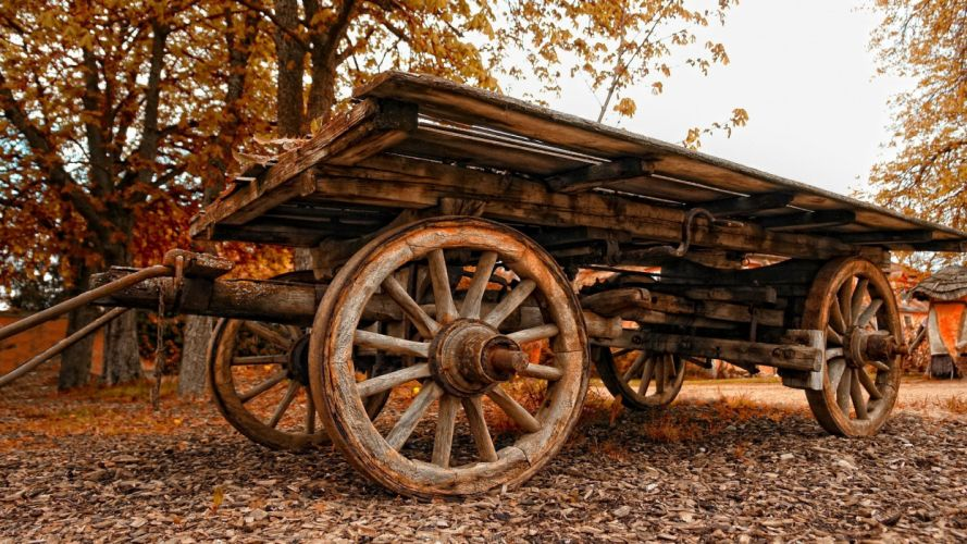 landscapes wood cars cart Carriage wallpaper
