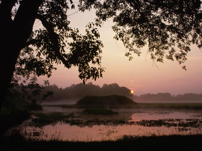 sunrise nature Alabama parks wallpaper