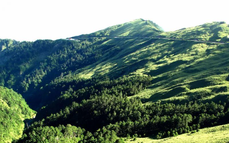 mountains landscapes nature trees forests grass hills hillside wallpaper