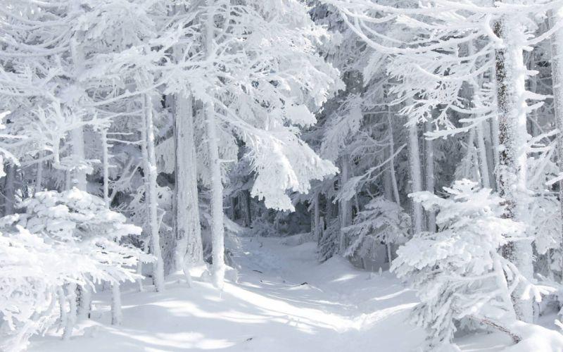 landscapes nature snow wallpaper