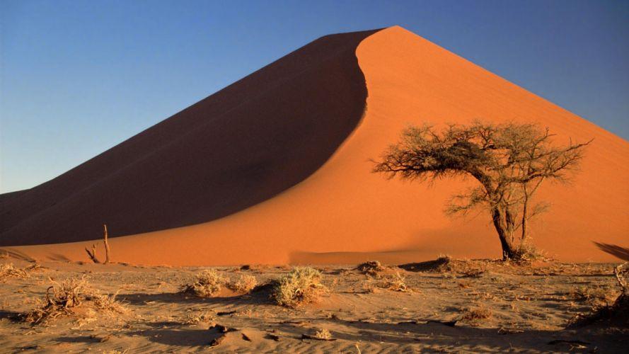 Acacia Namibia sand dunes Africa Namib Desert wallpaper