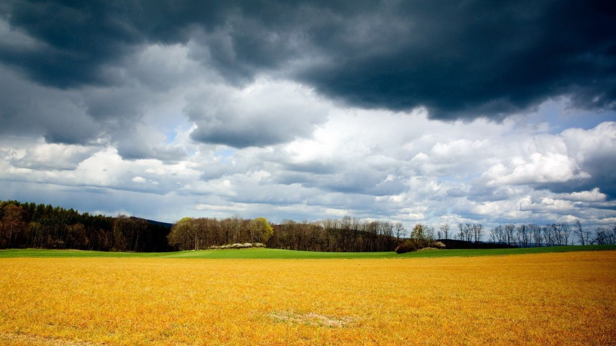 clouds landscapes nature forests fields skyscapes land wallpaper