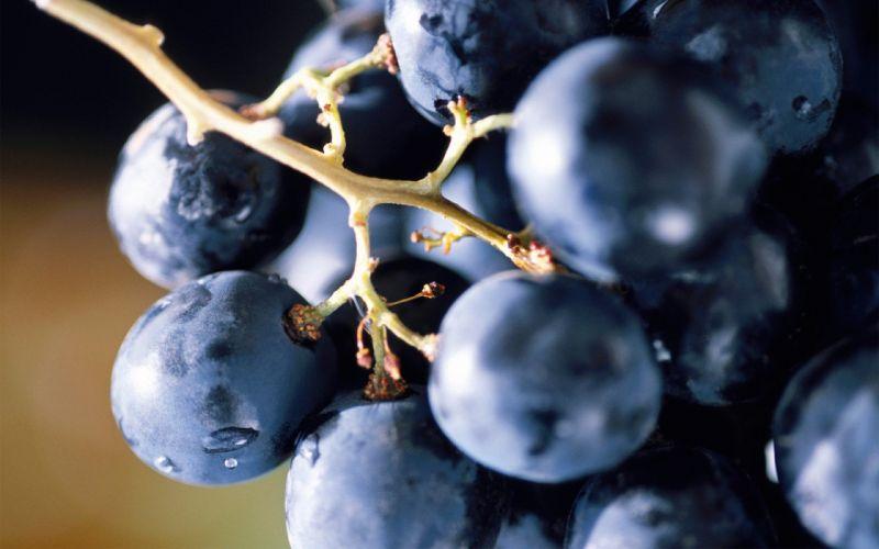 food grapes wallpaper