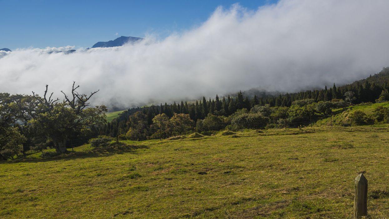 clouds landscapes nature forests wallpaper