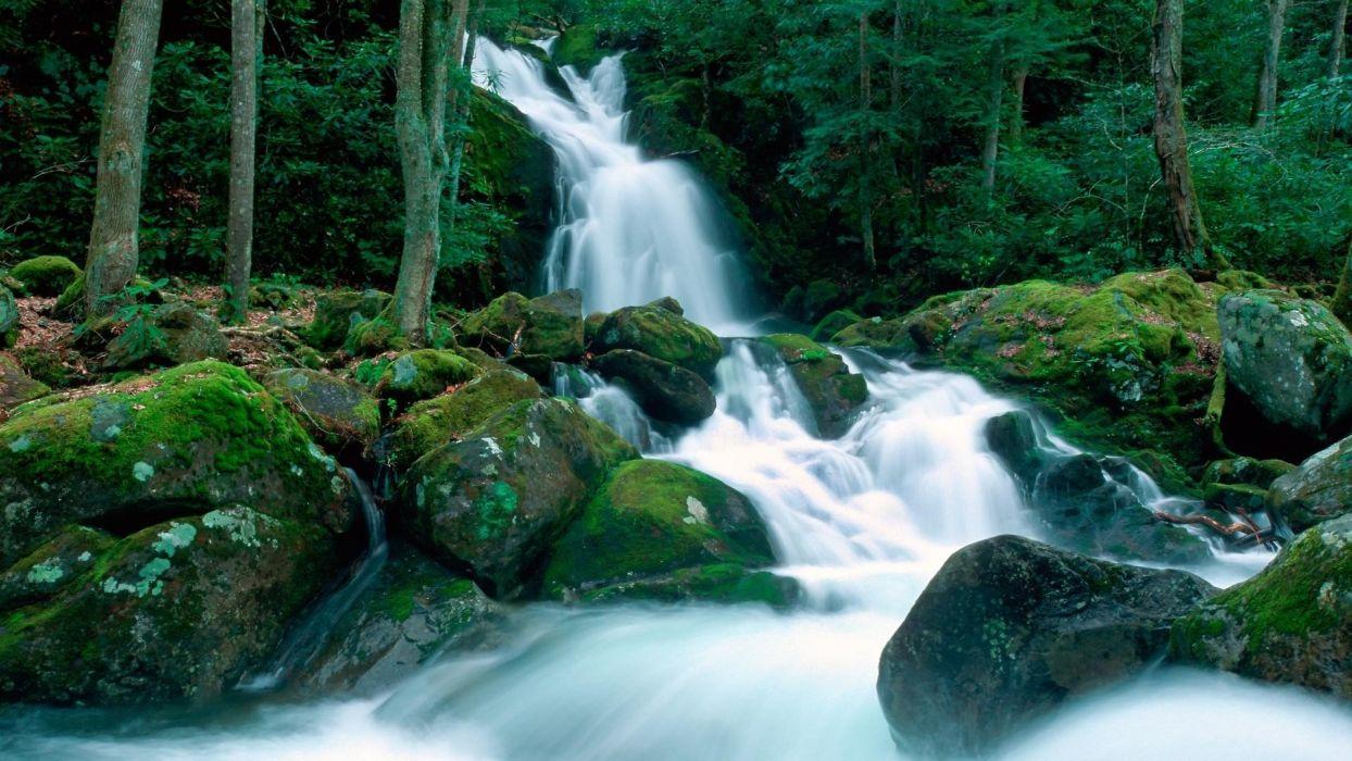 landscapes nature falls Great Smoky Mountains creek North Carolina wallpaper