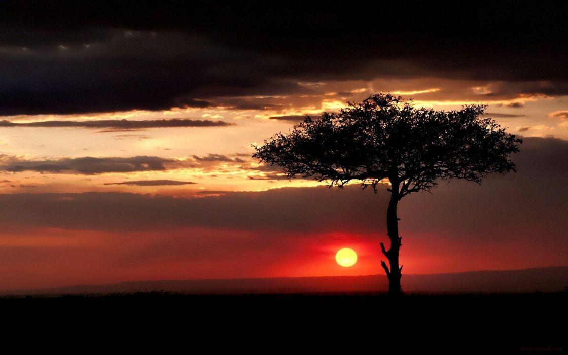sunset landscapes nature Sun trees wallpaper