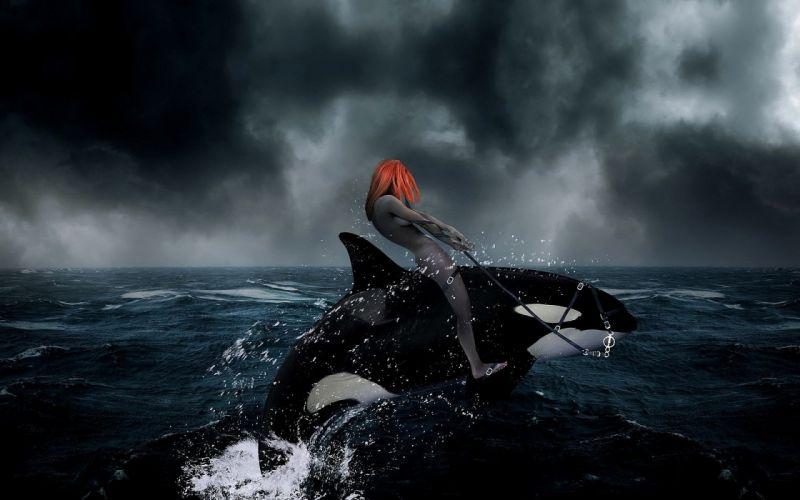 artwork killer whales riding wallpaper