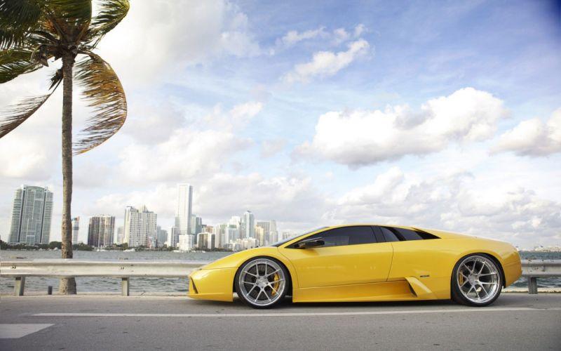 cars Lamborghini palm trees wallpaper