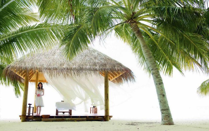 women palm trees bright beaches wallpaper
