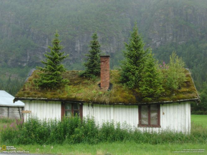 trees houses Norway National Geographic wallpaper