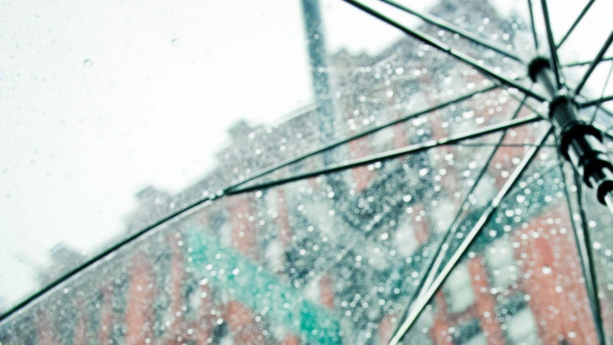 rain umbrellas wallpaper
