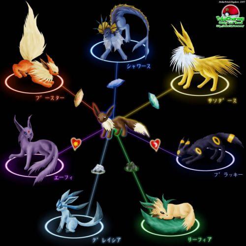 Pokemon Eevee wallpaper
