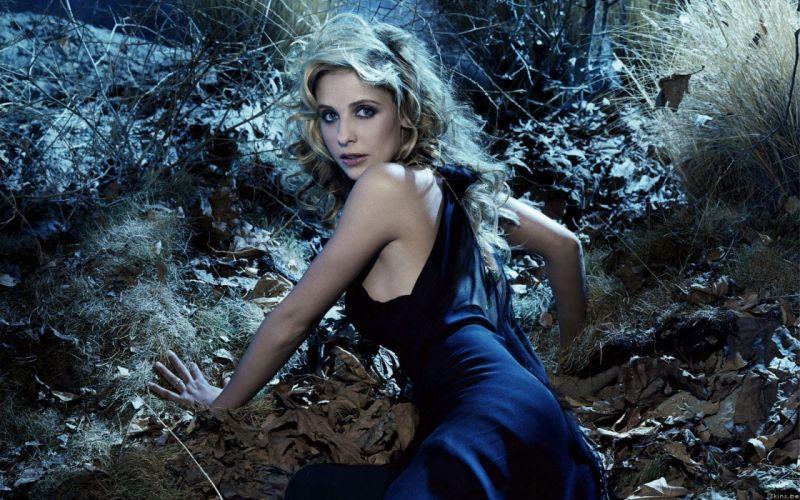 blondes women Sarah Michelle Gellar blue eyes celebrity wallpaper