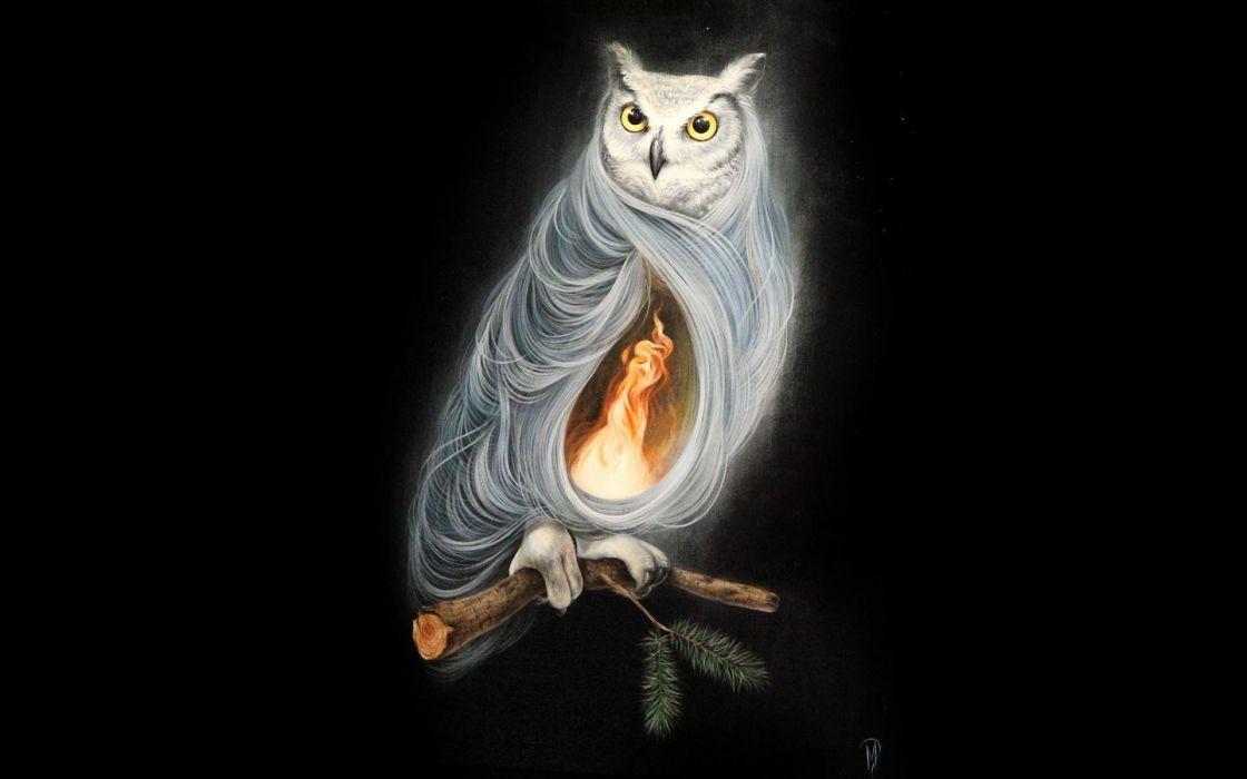 fire owls artwork wallpaper