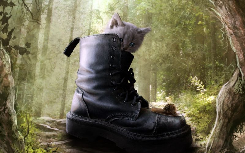 forests cats artwork kittens Puss in Boots wallpaper