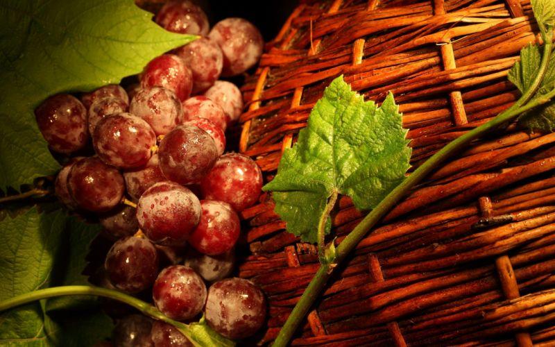 fruits baskets wallpaper
