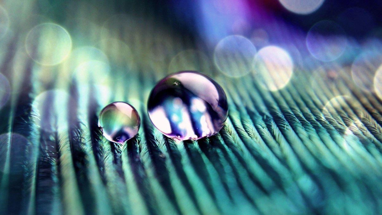 abstract water drops macro wallpaper