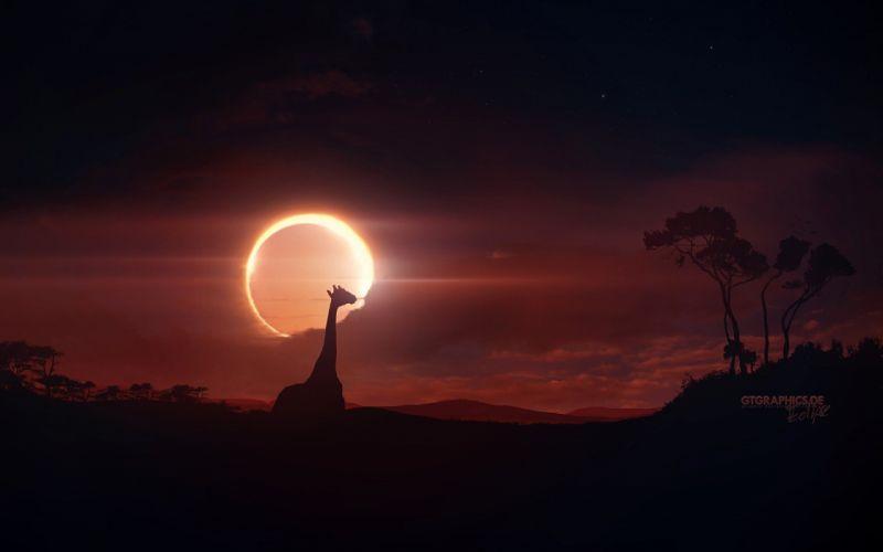 clouds Sun Moon eclipse sunlight skies giraffe wallpaper