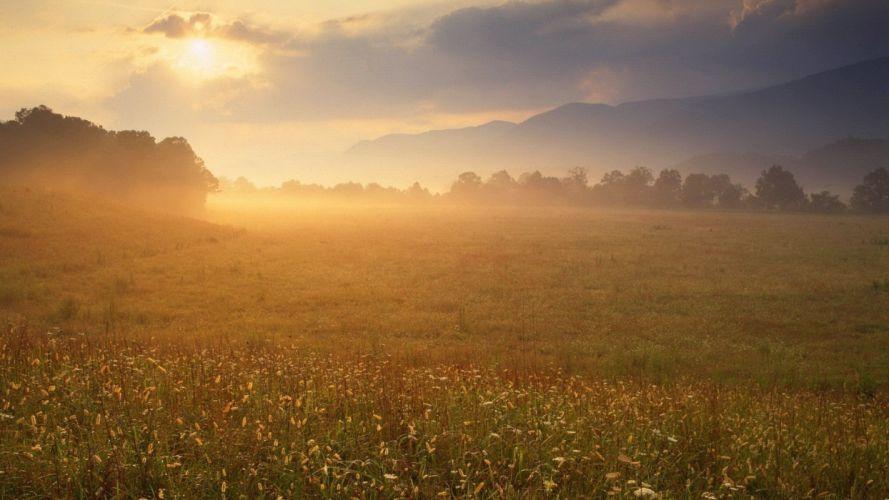 fields sunlight plains Pices wallpaper