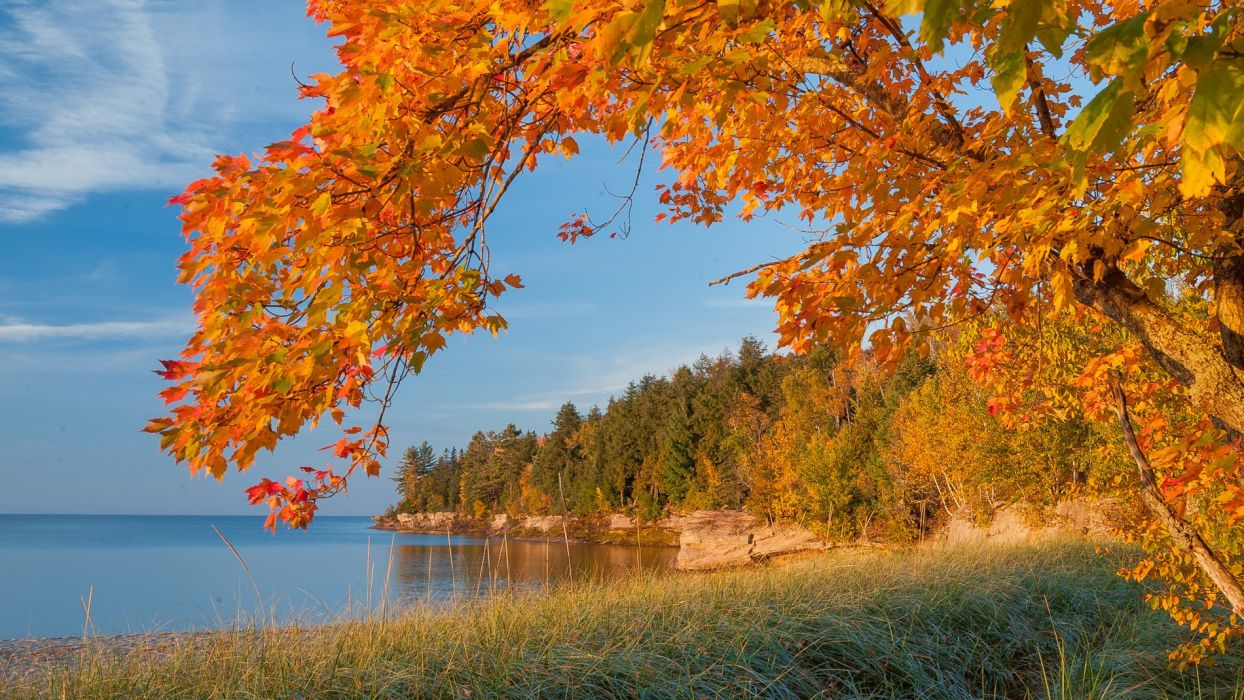autumn lake trees landscape Michigan wallpaper