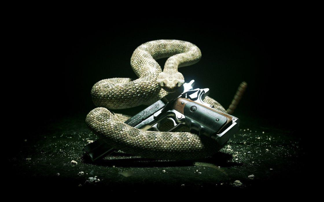 Hitman 5 gun snake style 47 wallpaper