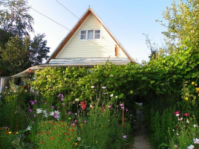 house flowers summer greens wallpaper
