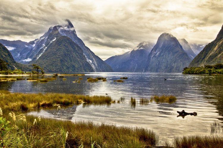 Milford Sound New Zealand pond mountain landscape wallpaper