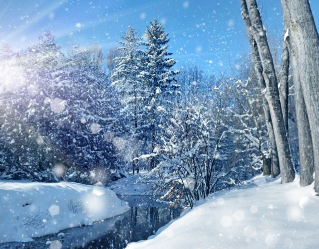 nature sky trees landscape winter bokeh christmas wallpaper