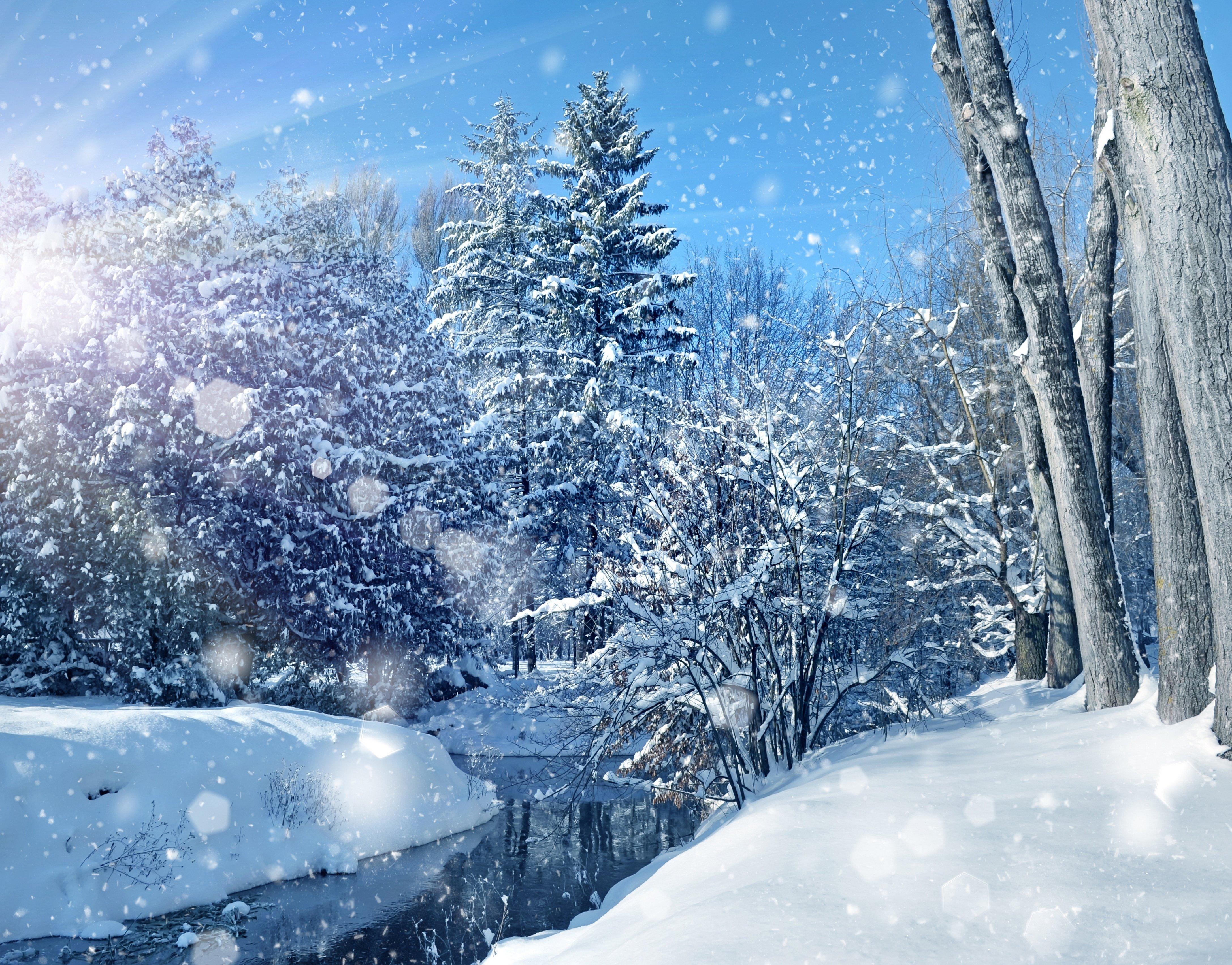 Nature sky trees landscape winter bokeh christmas - Christmas nature wallpaper ...