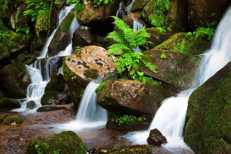 waterfall rocks plants nature wallpaper