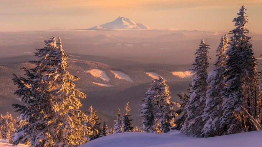 landscapes snow trees wallpaper