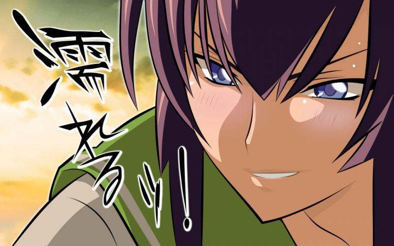 Highschool of the Dead Busujima Saeko wallpaper