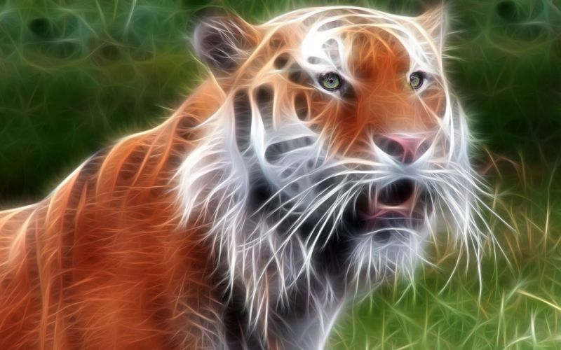 animals tigers Fractalius wallpaper