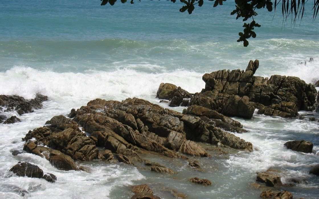 landscapes nature coast waves rocks stones branches sea wallpaper