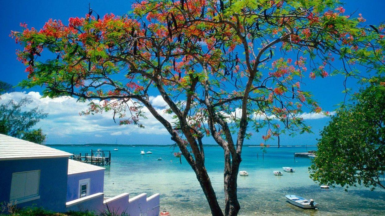 tropical escape Bahamas wallpaper