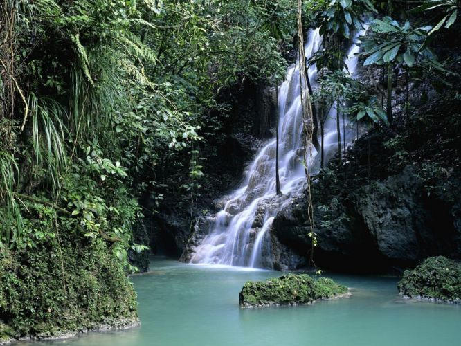 forests Jamaica waterfalls wallpaper