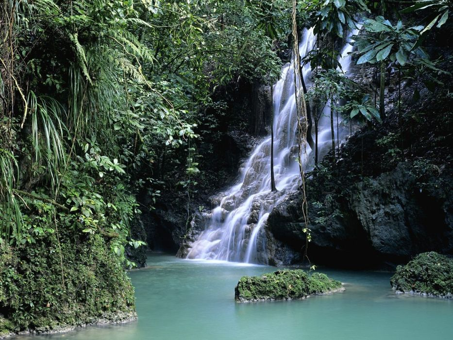 forests Jamaica waterfalls wallpaper