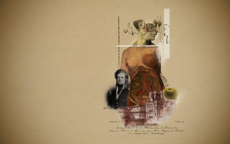 anatomy collage wallpaper