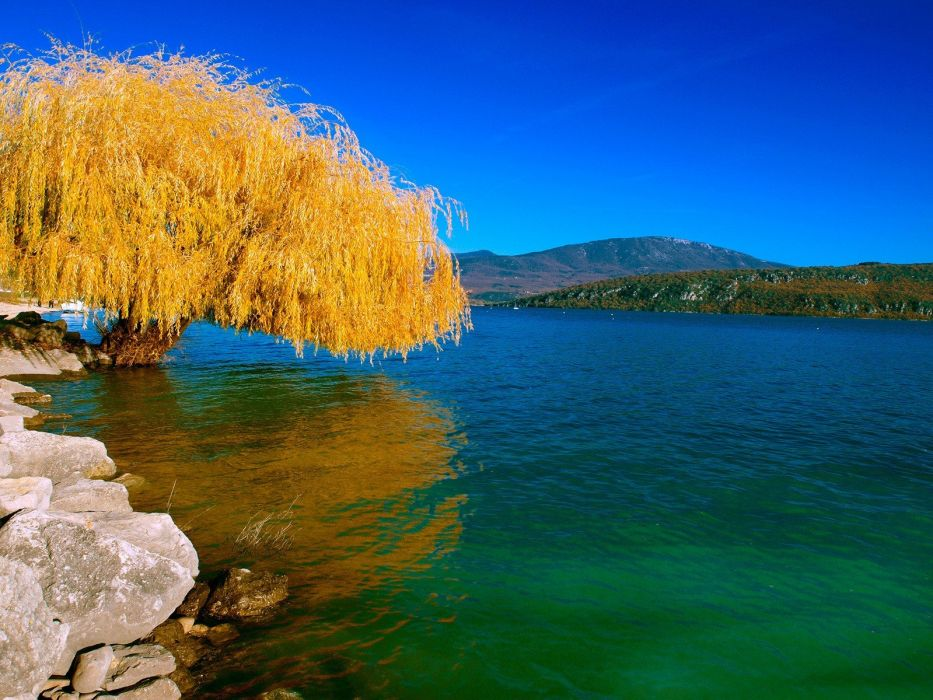 water landscapes nature trees skylines lakes reflections wallpaper