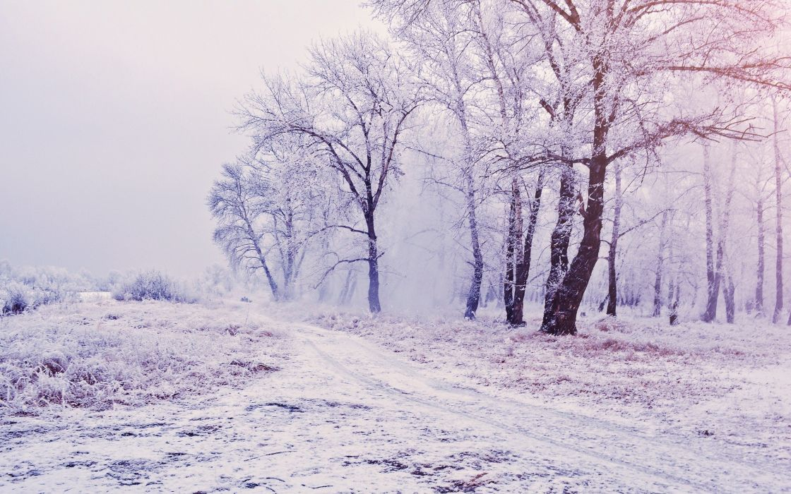 landscapes nature snow wallpaper