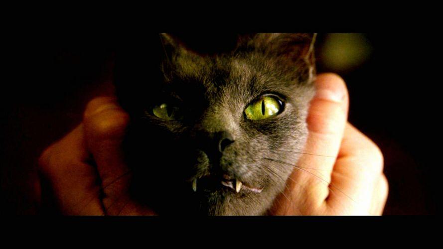 CONSTANTINE horror fantasy occult dark cat wallpaper