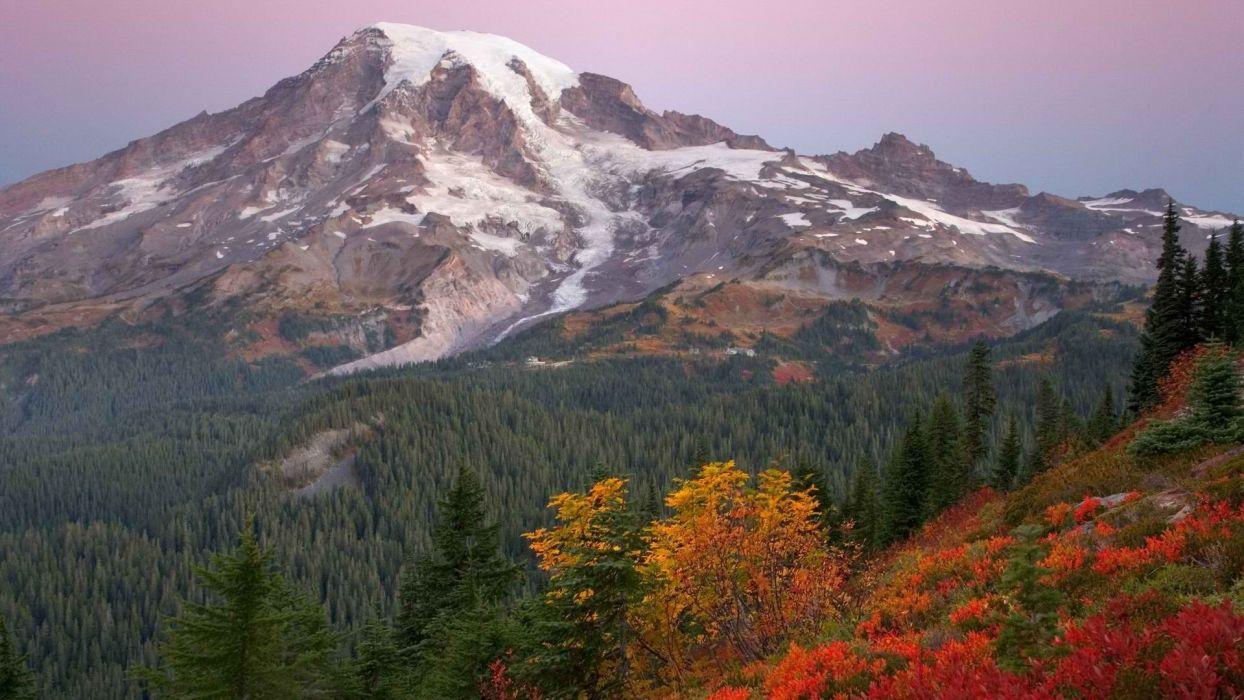 sunrise paradise National Park Washington Mount wallpaper