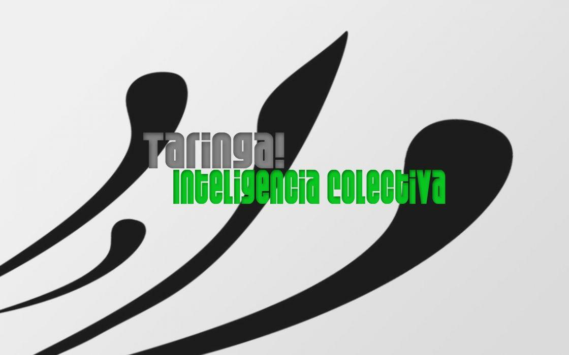 website Taringa wallpaper