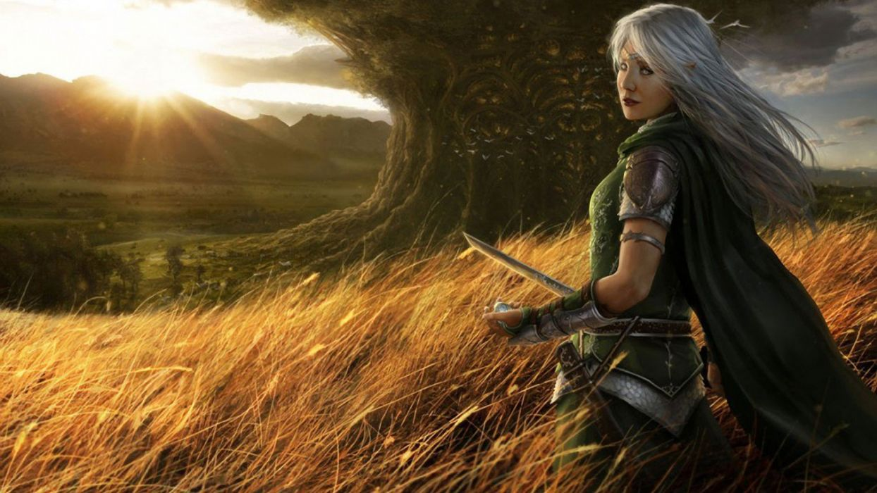 women mountains clouds landscapes trees stare grass long hair fantasy art armor elves sunlight cloaks digital art white hair girls with swords swords wallpaper