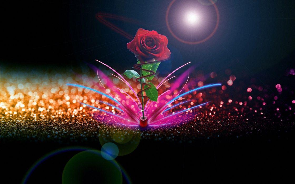 flowers digital art roses wallpaper