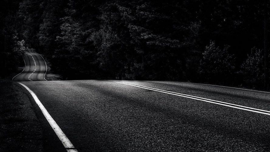 trees roads monochrome asphalt wallpaper
