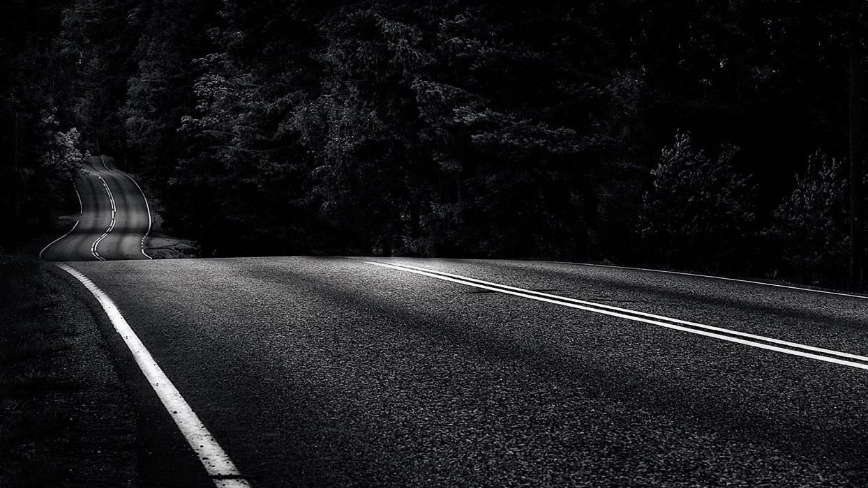 trees roads monochrome asphalt wallpaper