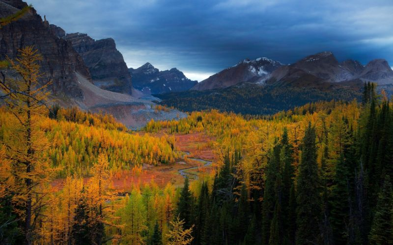 mountains trees forests valleys Canada British Columbia rivers Mount Assiniboine canadian rockies park Larch wallpaper