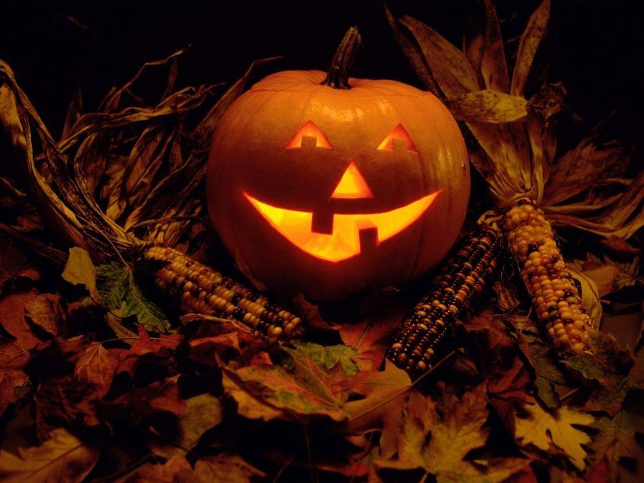 autumn Halloween glow pumpkins wallpaper