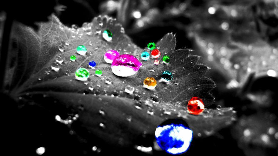 multicolor leaves digital art selective coloring wallpaper